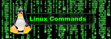 Linux df Command Usage Examples